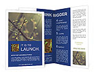 0000036744 Brochure Templates