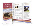 0000036836 Brochure Templates