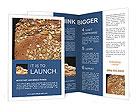 0000037104 Brochure Templates