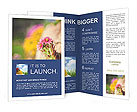 0000037129 Brochure Templates