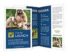 0000037134 Brochure Templates