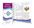0000037358 Brochure Templates