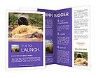 0000037401 Brochure Templates