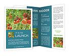 0000037439 Brochure Templates