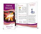 0000037650 Brochure Templates