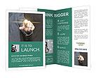 0000037840 Brochure Templates