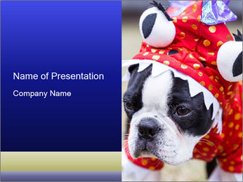 0000037933 PowerPoint Template