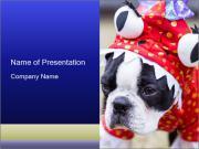 0000037933 PowerPoint Templates