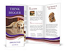 0000038227 Brochure Templates