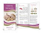 0000038274 Brochure Templates