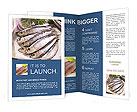 0000038278 Brochure Templates