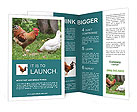 0000038625 Brochure Templates
