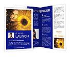 0000038633 Brochure Templates