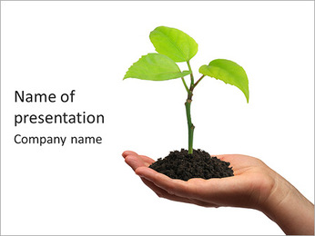 Plant In Human Hand PowerPoint Template