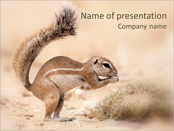 Small Gopher PowerPoint Template