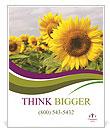 Sunflower Field Poster Template