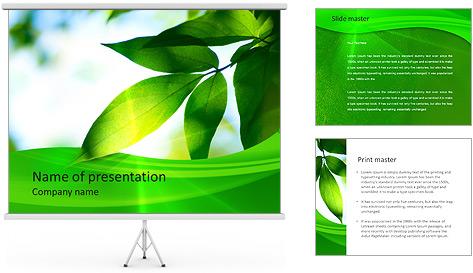 Plante verte dans Sun Light Modèles des présentations  PowerPoint