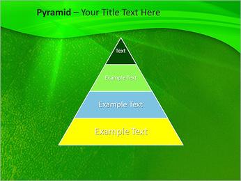 Plante verte dans Sun Light Modèles des présentations  PowerPoint - Diapositives 10