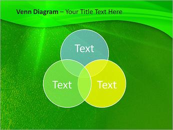 Plante verte dans Sun Light Modèles des présentations  PowerPoint - Diapositives 13