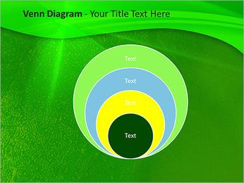 Plante verte dans Sun Light Modèles des présentations  PowerPoint - Diapositives 14