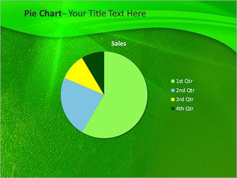 Plante verte dans Sun Light Modèles des présentations  PowerPoint - Diapositives 16