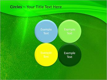 Plante verte dans Sun Light Modèles des présentations  PowerPoint - Diapositives 18
