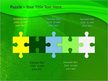 Plante verte dans Sun Light Modèles des présentations  PowerPoint - Diapositives 21