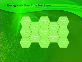 Plante verte dans Sun Light Modèles des présentations  PowerPoint - Diapositives 24