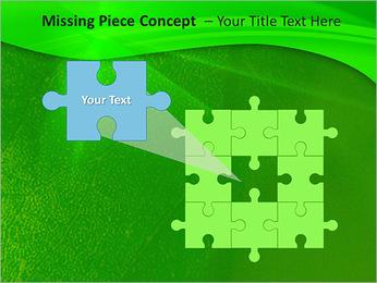 Plante verte dans Sun Light Modèles des présentations  PowerPoint - Diapositives 25