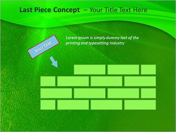 Plante verte dans Sun Light Modèles des présentations  PowerPoint - Diapositives 26