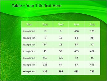 Plante verte dans Sun Light Modèles des présentations  PowerPoint - Diapositives 35