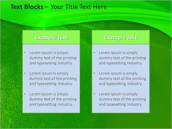 Plante verte dans Sun Light Modèles des présentations  PowerPoint - Diapositives 37