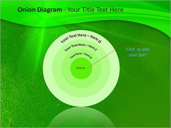 Plante verte dans Sun Light Modèles des présentations  PowerPoint - Diapositives 41