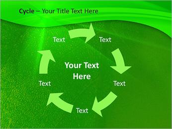 Plante verte dans Sun Light Modèles des présentations  PowerPoint - Diapositives 42