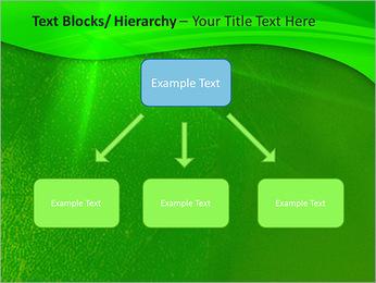 Plante verte dans Sun Light Modèles des présentations  PowerPoint - Diapositives 49