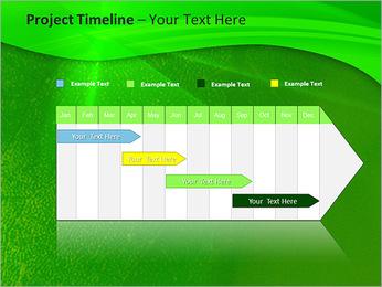 Plante verte dans Sun Light Modèles des présentations  PowerPoint - Diapositives 5