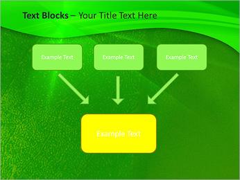 Plante verte dans Sun Light Modèles des présentations  PowerPoint - Diapositives 50