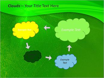 Plante verte dans Sun Light Modèles des présentations  PowerPoint - Diapositives 52