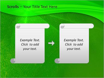 Plante verte dans Sun Light Modèles des présentations  PowerPoint - Diapositives 54