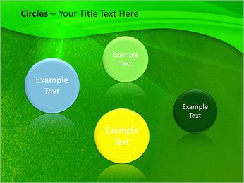 Plante verte dans Sun Light Modèles des présentations  PowerPoint - Diapositives 57