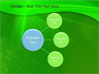 Plante verte dans Sun Light Modèles des présentations  PowerPoint - Diapositives 59