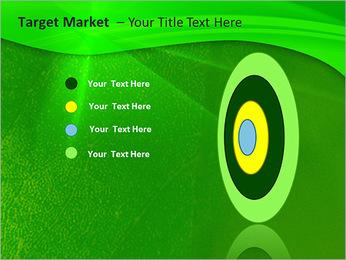Plante verte dans Sun Light Modèles des présentations  PowerPoint - Diapositives 64