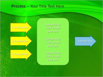 Plante verte dans Sun Light Modèles des présentations  PowerPoint - Diapositives 65