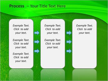 Plante verte dans Sun Light Modèles des présentations  PowerPoint - Diapositives 66
