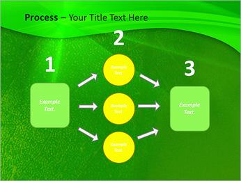 Plante verte dans Sun Light Modèles des présentations  PowerPoint - Diapositives 72