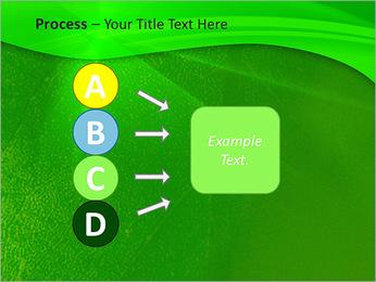 Plante verte dans Sun Light Modèles des présentations  PowerPoint - Diapositives 74