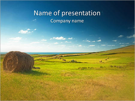 Sheaf InThe Field PowerPoint Templates