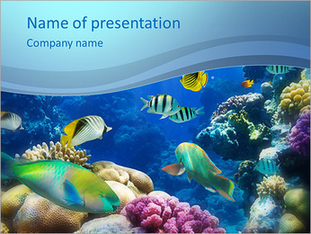 Exotic Fish PowerPoint Template