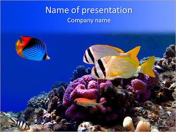 Submarine Kingdom PowerPoint Template