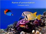 Submarine Kingdom PowerPoint Templates